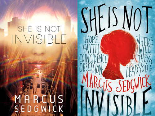 She Is Not Invisible book covers